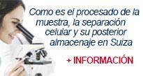 Procesamiento Y Criopreservación de Células Madre